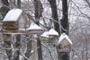 Snow on Bird Feeders © Mary Anne Romito