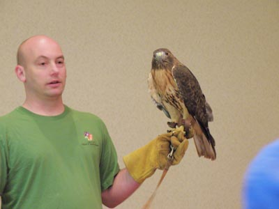 Tim and red-tail